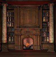 Обои PHOTO DECOR Библиотека 137  2,5*3,03м